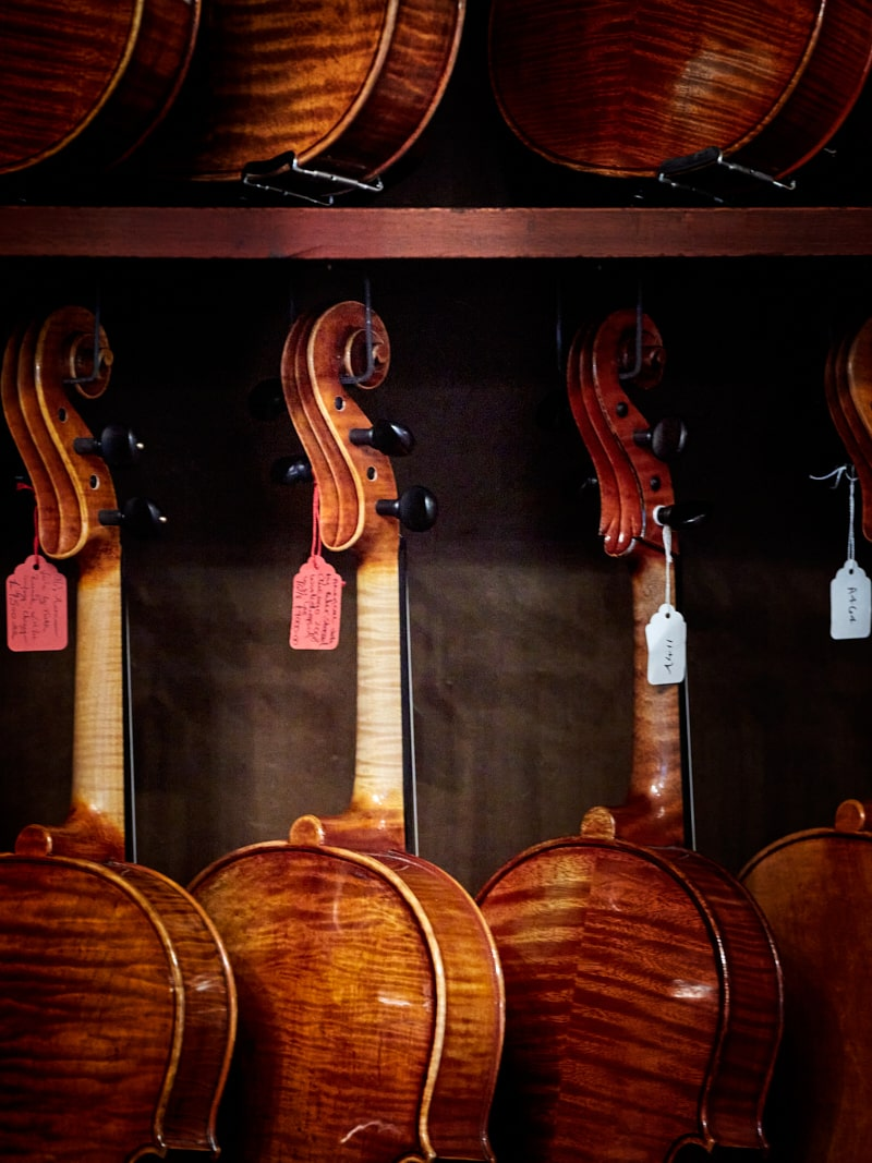 violincrd2250GautStudioXX3-min
